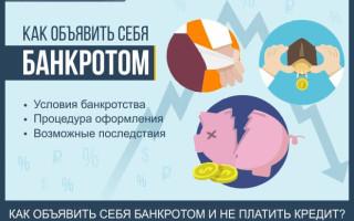 Как объявить себя банкротом перед банком и не платить кредит — практика и экспертные советы по признанию физического лица банкротом