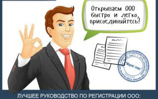 Как открыть ООО — пошаговая инструкция для тех, кто хочет самостоятельно зарегистрировать ООО + список документов