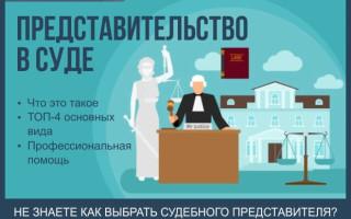 Что такое представительство в суде — обзор основных этапов представления интересов в суде + советы как выбрать судебного представителя
