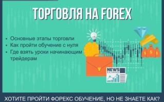 Форекс обучение с нуля — 6 основных этапов торговли на Forex + обзор программ торговли для начинающих трейдеров