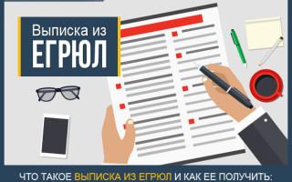 Как заказать выписку из ЕГРЮЛ — подробная инструкция + образцы документов