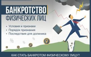 Банкротство физических лиц — пошаговая инструкция для физ лиц и индивидуальных предпринимателей + профессиональная помощь при банкротстве