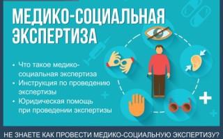 Медико-социальная экспертиза — пошаговая инструкция по проведению МСЭ + полезные советы при отказе в проведении экспертизы