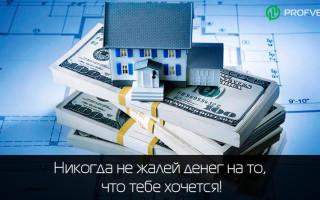 Инвестиции в недвижимость — с чего начать, плюсы и минусы инвестирования в жилую, коммерческую недвижимость и строительство