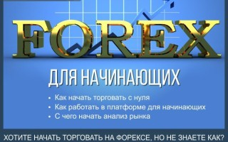 Форекс для начинающих — пошаговая инструкция как начать торговать на Forex + 5 золотых правил для начинающего трейдера