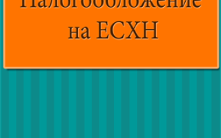 Торговля вразвал на ЕСХН: как вносить данные в КУДИР