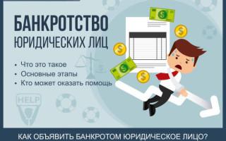 Банкротство юридических лиц — пошаговая инструкция 2016 года + профессиональное сопровождение при банкротстве предприятий