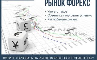 Форекс — что такое рынок форекс + 7 советов как заработать онлайн и избежать рисков