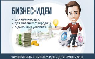 Бизнес-идеи с минимальными вложениями — ТОП-15 лучших идей для бизнеса 2016—2017 года для начинающих предпринимателей по открытию бизнеса с нуля + наглядные примеры
