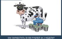 Как быстро заработать много денег — 30 000 руб. за 2 недели. 7 реальных способов