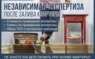 Независимая экспертиза после залива квартиры — пошаговая инструкция как действовать при затоплении квартиры + профессиональная помощь в проведении независимой экспертизы квартиры